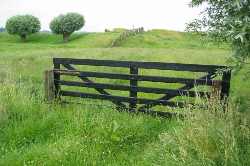 A field gate in situ