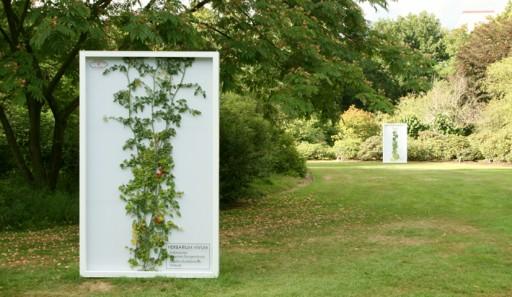 Herbarium Vivum by Driessens & Verstappen