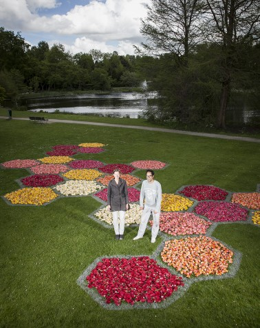 Reconstruction of the hexagonal flowerbeds of the Floriade 1972, made from 67.000 tulip heads.